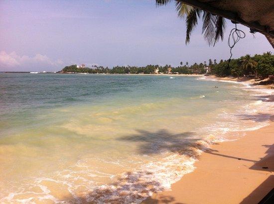 SurfCity Guesthouse: uitzicht over de baai