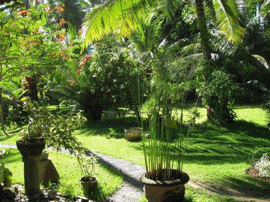 Bondalem, إندونيسيا: Garden