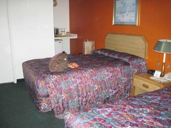University Inn: room