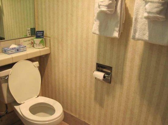Travelodge San Luis Obispo: bathroom