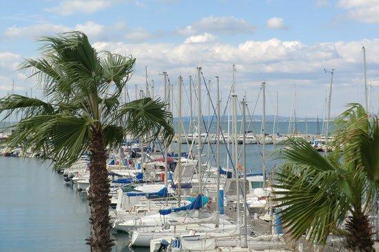 Hotel Azur : Vue du balcon sur la port
