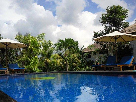 Terang Bulan Cottages: 敷地内のプール
