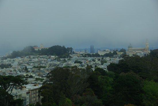 พื้นที่สันทนาการแห่งชาติโกลเดนเกท: Uitzicht vanuit de museumtoren Golden Gate Park