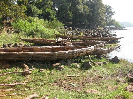 Bahar Dar, Etiopien: barche di papiro sul lago tana