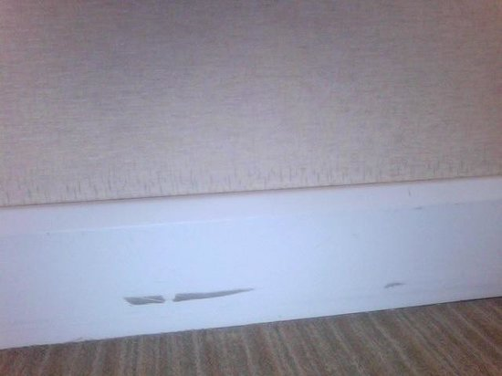 Hotel Atala Champs Elysees: running board damage - all over the walls