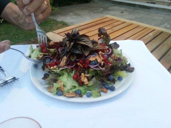 Agriturismo Dongili: e che dire di questa isalata con basilico rosso, noci, cipolla di tropea?