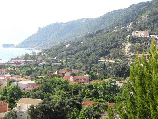 Dina's Paradise Hotel & Apartments: So green!