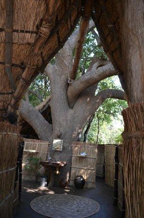 Tafika Camp: The sausage tree house bathroom