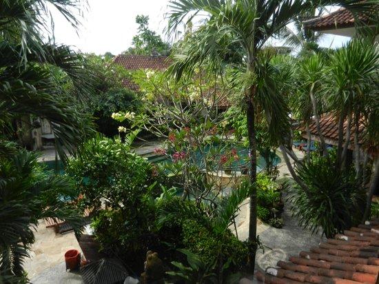 โรงแรม ทามูคามิ: Uitzicht vanuit hotelkamer op zwembad