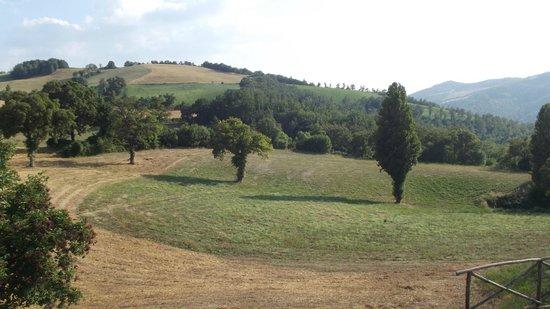 Agriturismo La Cima : Panorama