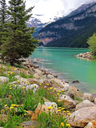 Banff Park Lodge Resort and Conference Centre: Lake Louise, not far from Banff