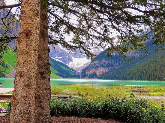 Banff Park Lodge Resort and Conference Centre: Lake Louise