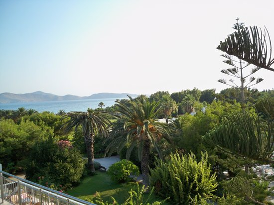 Caravia Beach Hotel : Widok na ogród hotelowy z tarasu drink baru