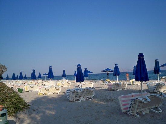 Caravia Beach Hotel : Pusta plaża o świcie