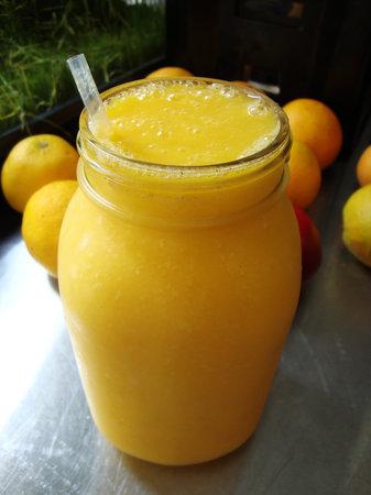 The Food Forest : Orange Mango Sorbet