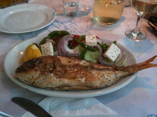 Atlas Bar Restaurant: Fish with teeth!