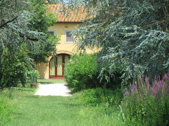 Agriturismo Il Bottaccino: Extérieurs : Piscine, chevaux .....