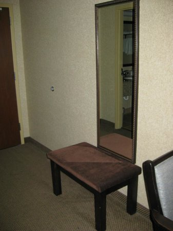 Holiday Inn Express & Suites Grand Forks : Mirror