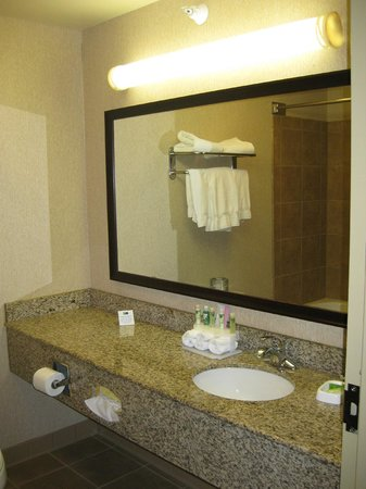 Holiday Inn Express & Suites Grand Forks : Bathroom area