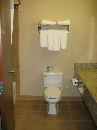 Holiday Inn Express & Suites Grand Forks : View of the bathroom
