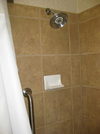 Grand Forks, ND: Shower with awkward handle