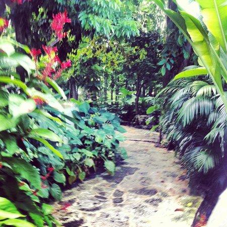 Sundy House: Stunning paradise