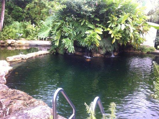 Sundy House: Tranquil Cenote