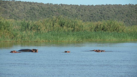 Mvubu River Lodge: Sundowner boat cruise