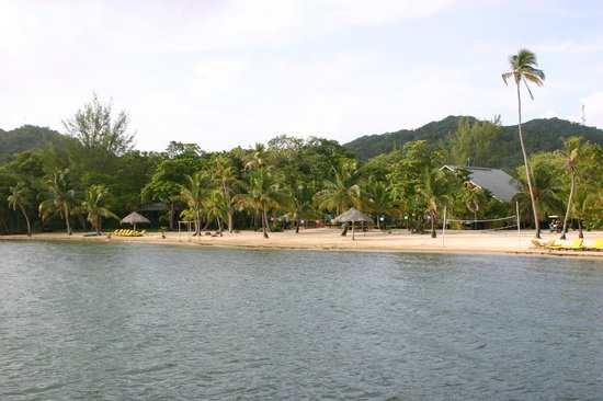 The Resort at Palmetto Bay : View of the resort from the dock- most rooms in jungle!