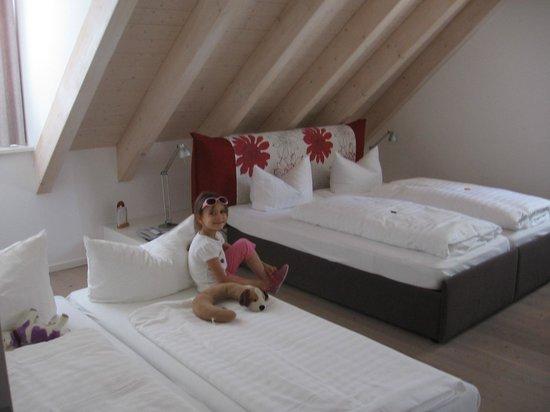 Fuchsbraeu: room
