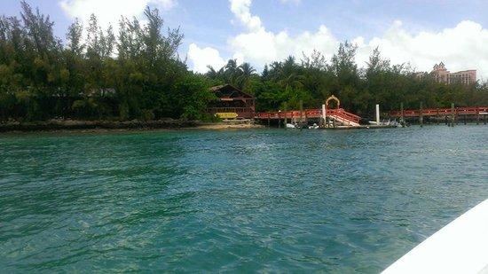 Sivananda Ashram Yoga Retreat: Convenient boat ride from Nassau to dock