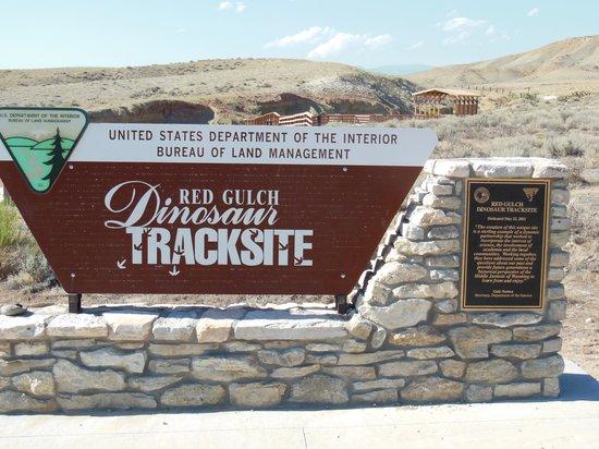 Greybull, WY: Dinosaur track site