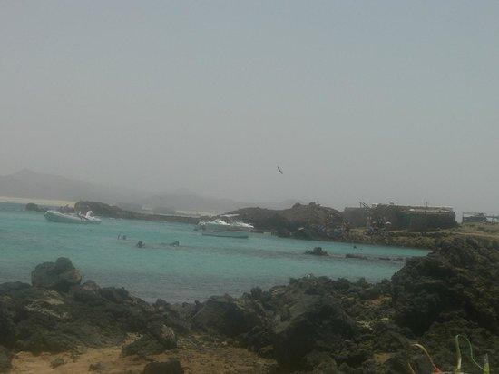 aguas isla de lobos - Picture of Isla de Lobos, La Oliva - TripAdvisor
