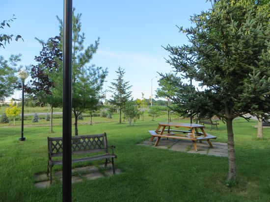 Capri Inn: Peaceful picnic area