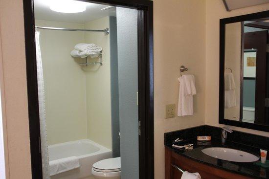 Hyatt Place Atlanta Airport North : Bathroom