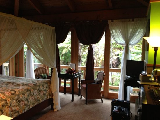 At the Craters Edge: Rainforest room