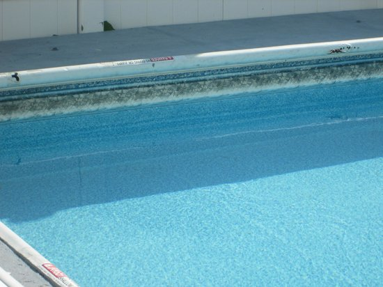 Old Colonial Motel: Black Mildew all around the liner of the pool-broken coping around the pool