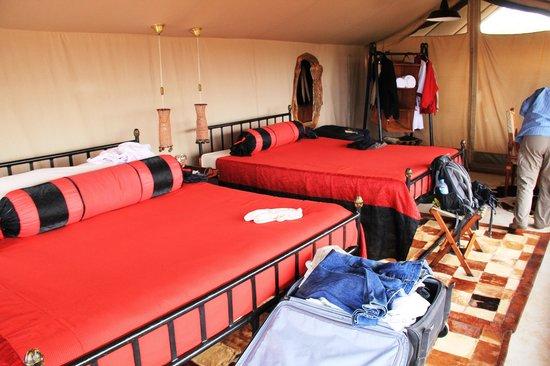 Shu'mata Camp: Betten im Gastzelt