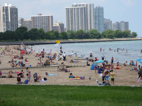 Foster Avenue Beach: Sit in the grass if you do not want sand