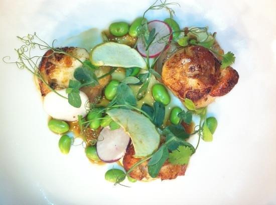 Kota Restaurant: porthleven scallops....