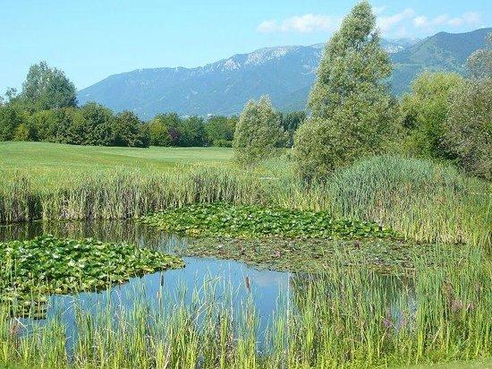 Asolo Golf Club Resort: nature