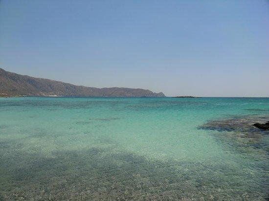 Chrispy World: spiaggia elafonissi