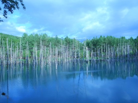 Blue Pond : Trying to take it with another mode of the camera.