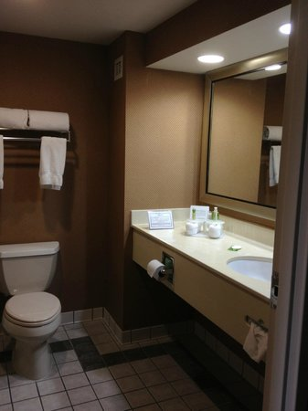 Holiday Inn Express Edgewood-I95: Economy size bathroom
