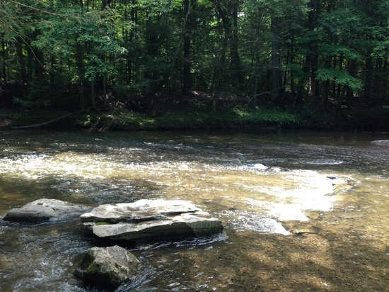 Rip Van Winkle Campgrounds: Waterhole