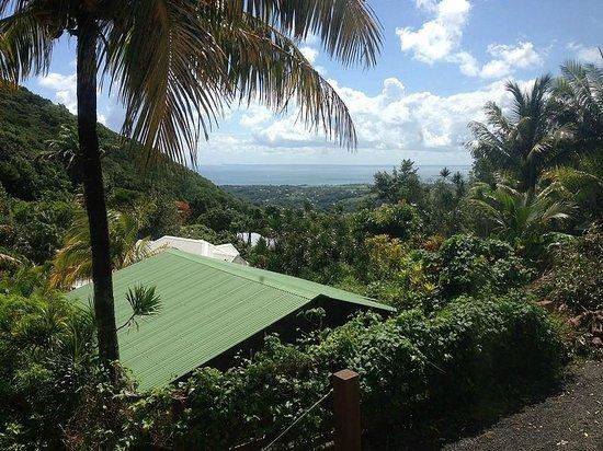 Piton Bungalows: Vue du grand bungalow