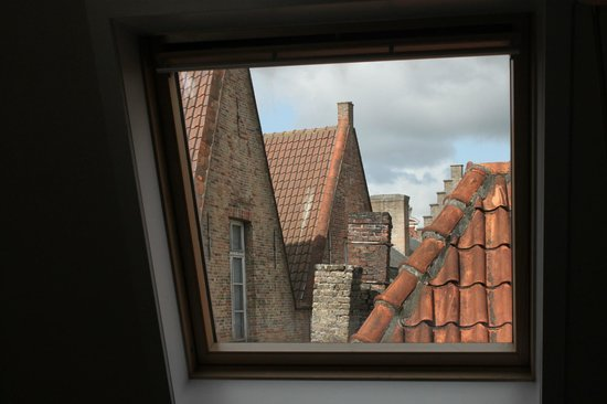 House of Seasons : View from the velux window