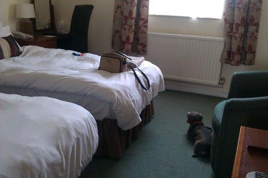 Best Western Mayfield House Hotel: Bedroom no. 25 in annexe
