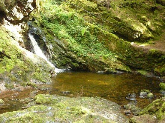 Puck's Glen: cascada