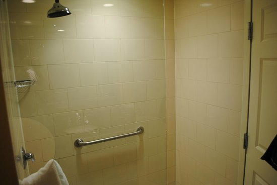 Wyndham Gettysburg: Shower with a rainfall shower head